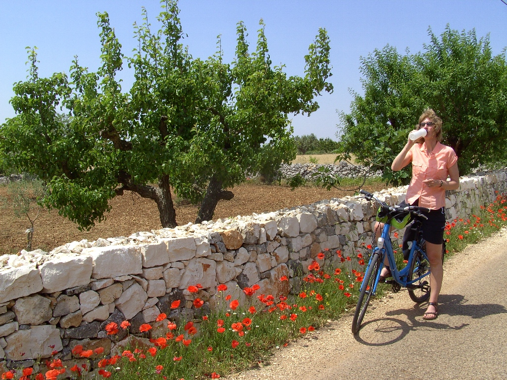 Fietsvakantie Puglia - niveau