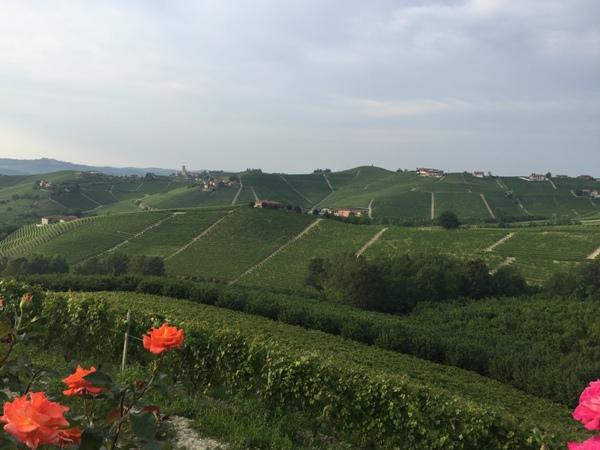 Fietsen in Noord Italië - Piemonte (1)