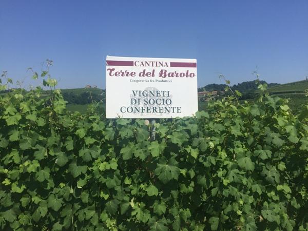 Fietsen in Noord Italië - Piemonte (4)