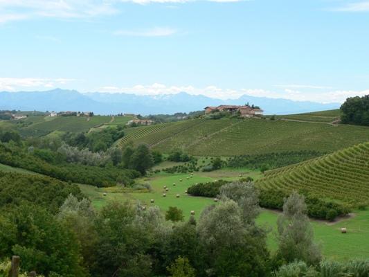 Fietsvakantie Piemonte Cuneo