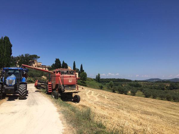 Fietsvakantie Toscane - fietsen in Italië (9)