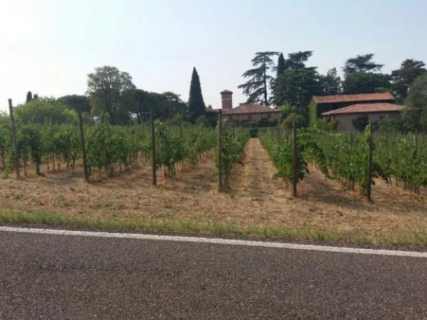 Fietsvakantie Emilia DeLuxe Noord Italië (13)