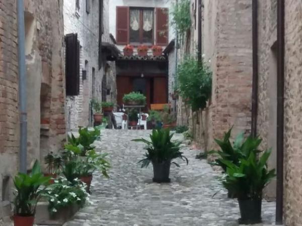 Fietsvakantie Emilia DeLuxe Noord Italië (23)