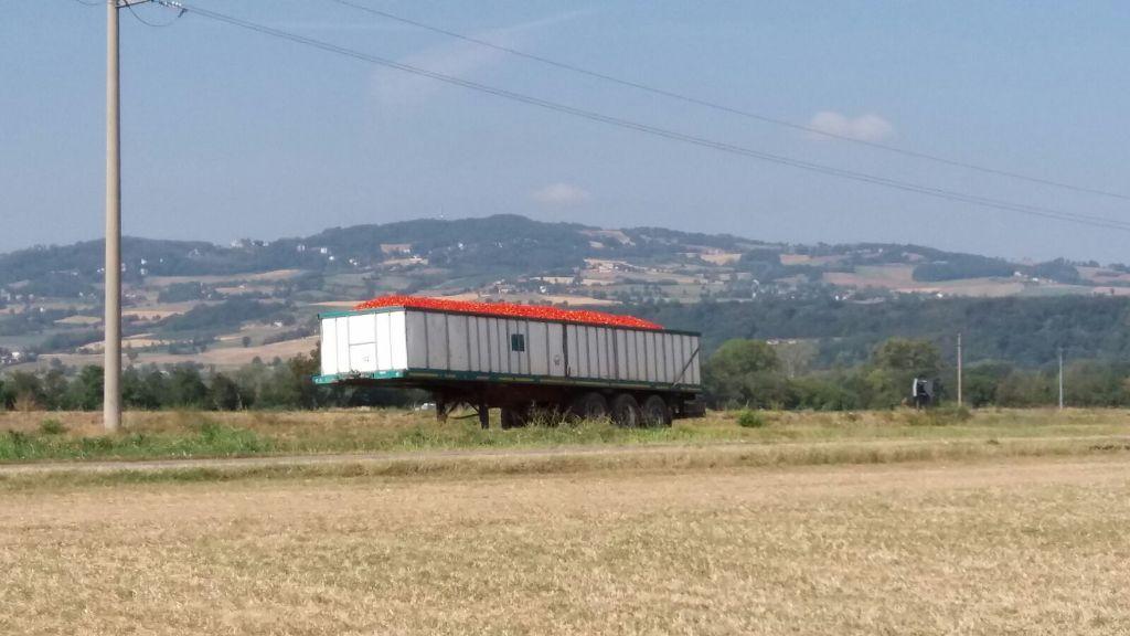 Fietsvakantie Emilia DeLuxe Noord Italië (44)