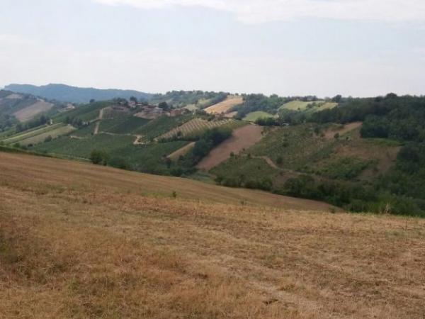 Fietsvakantie Emilia DeLuxe Noord Italië (6)