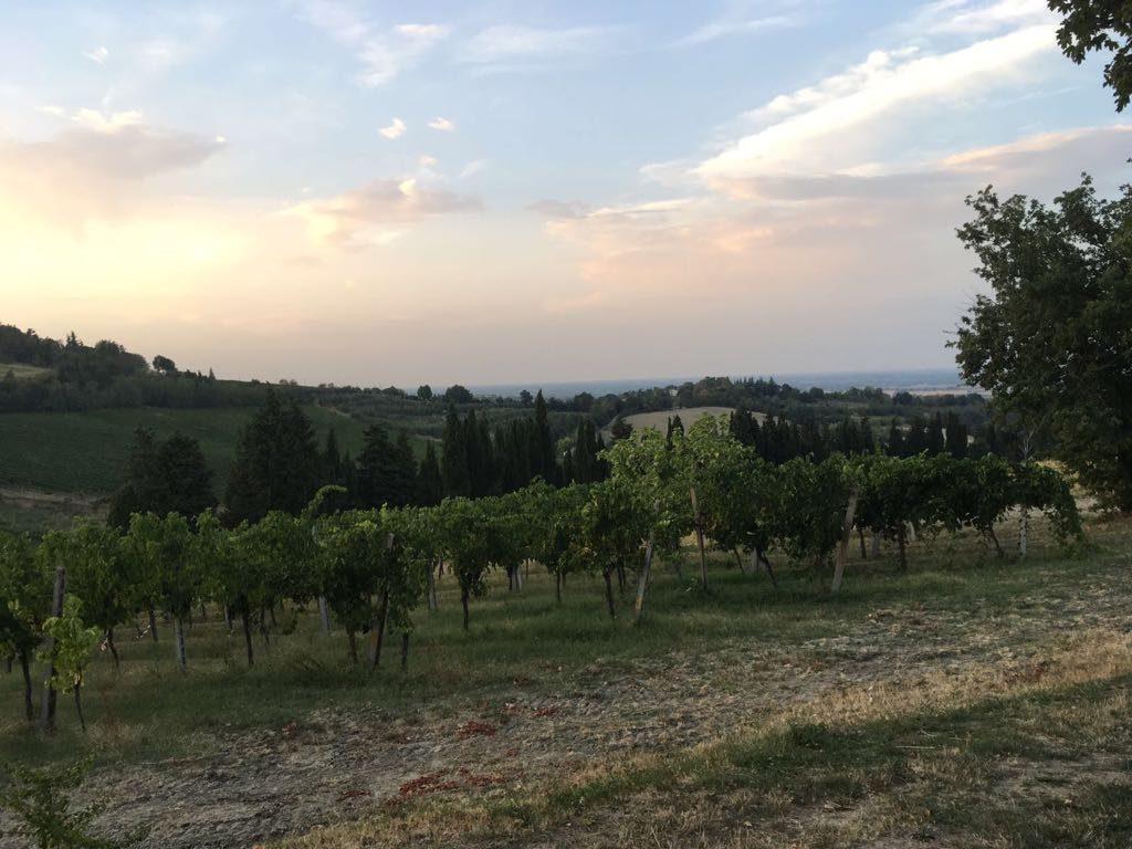 Fietsvakantie Romagna Noord Italië (6)
