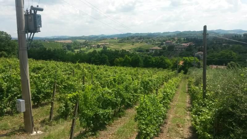 Fietsvakantie in Romagna en Ferrara - Noord Italië