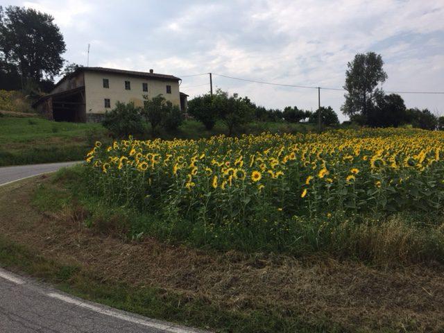 Fietsvakantie in Piemonte Noord Italië