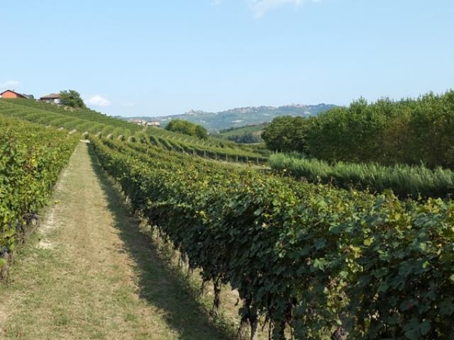 Fietsvakantie Piemonte Cuneo 8 dagen