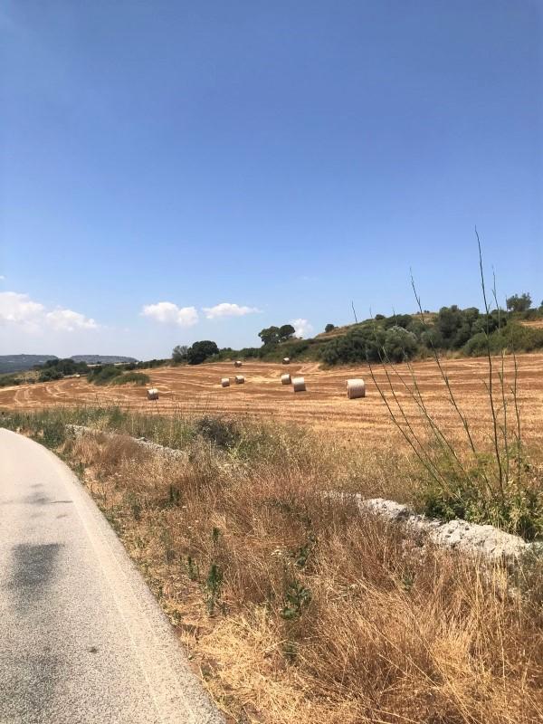 fietsvakantie in Italië - Sicilië