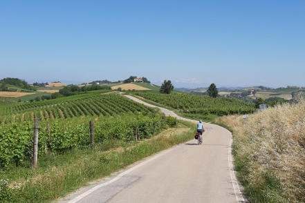 Fietsvakantie Piemonte - Roero Langhe en Monferrato Noord Italië uitgelichte foto